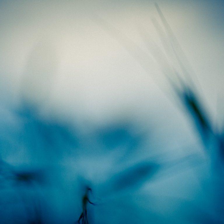Fotografía artística - 03