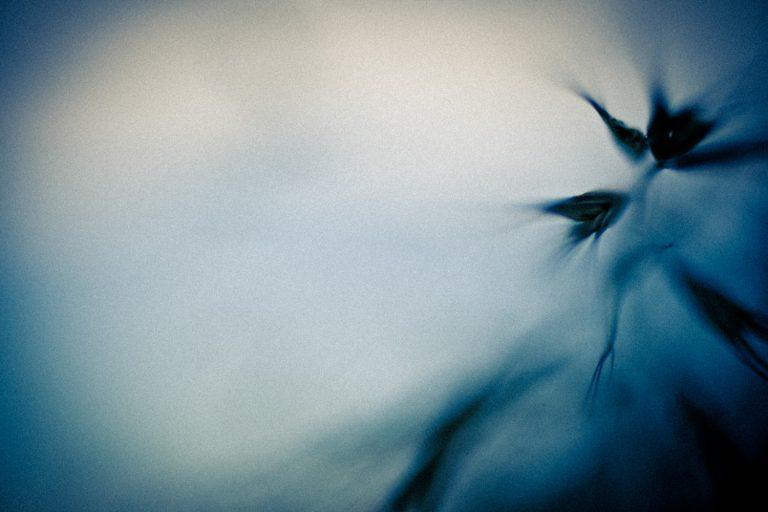 Fotografía artística - 05